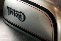 Brushed decals and line work on tank of this cool Triton